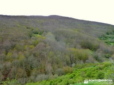 Cañones Ebro, Alto Campoo, Brañosera,Valderredible; excursiones en la sierra de madrid;madrid excu